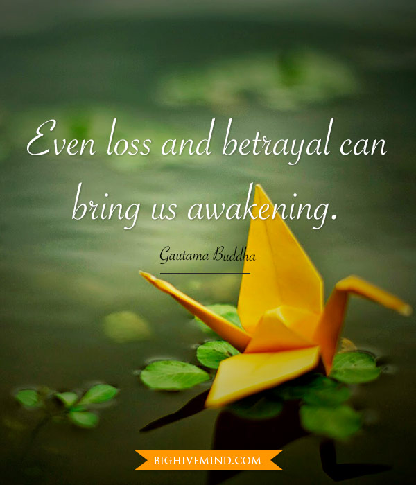 buddha-quotes-even-loss-and-betrayal2