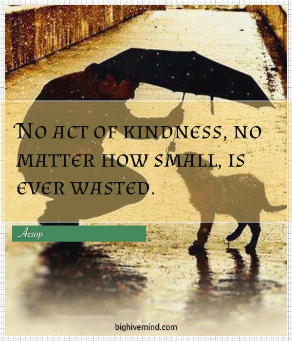 kindness-quotes-no-act-of-kindness