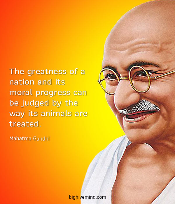 kindness-quotes-the-greatness-of-a