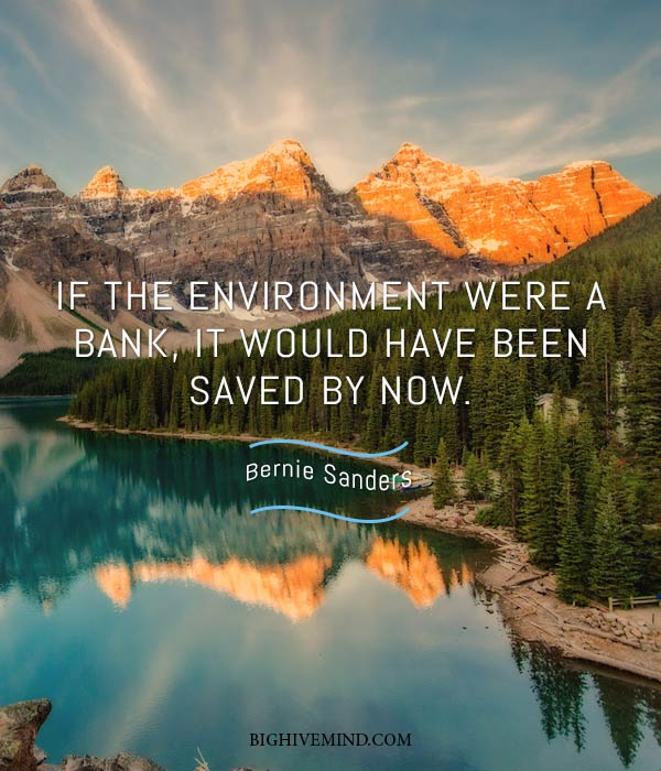 bernie-sanders-quotes-if-the-environment-were