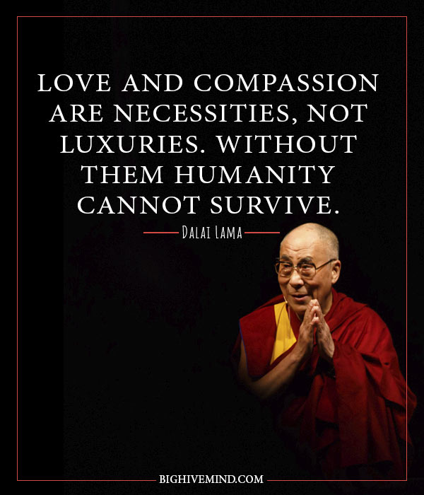 50 Thought Provoking Dalai Lama Quotes  Big Hive Mind