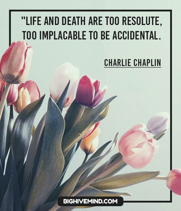 charlie-chaplin-quotes-life-and-death-are